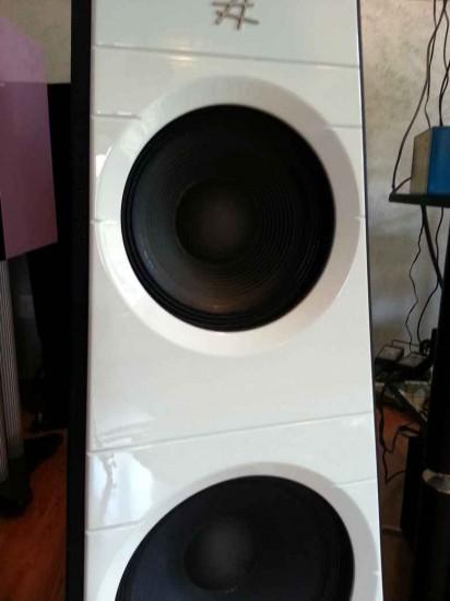 Diesis Audio Aura midrange vista anteriore 14