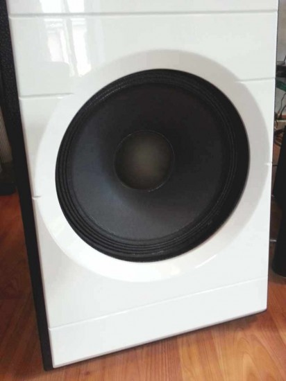 Diesis Audio Aura woofer vista  anteriore