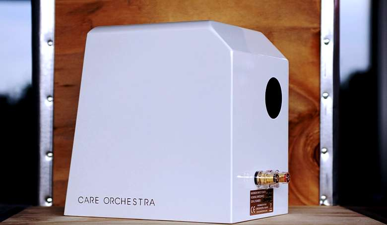 Care Orchestra Rose 1 14_tn